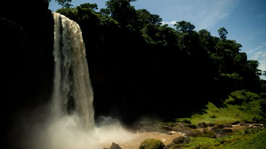 The falls are beautiful, 262 feet high. The Nkam take its pace at the bottom and disappear in a verdant valley.