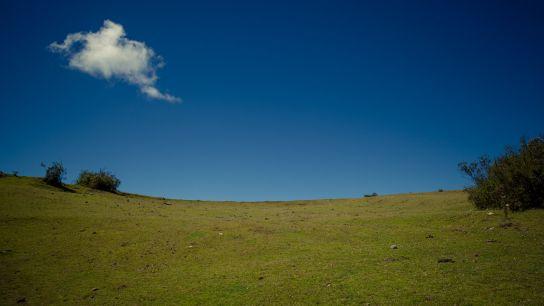 …on voit encore des paysages…
