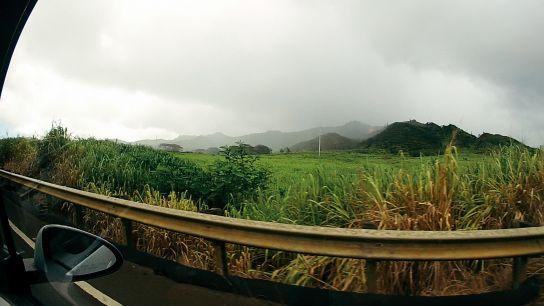 Highway 50, vers Waimea Canyon et Koke'e State Park, Kaua'i, Hawaii