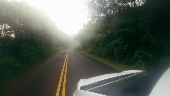 Route vers Pu'u o Kila Lookout, Kaua'i, Hawaii