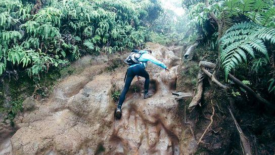 Hiking and climbing in the mud, Koke'e State Park, Kaua'i, Hawaii