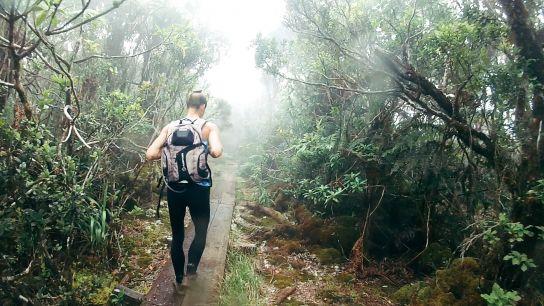 Woman walking in the mist, Koke'e State Park, Kaua'i, Hawaii