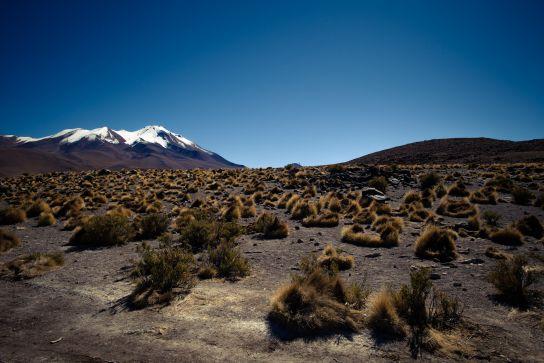 Laguna Hedionda, Bolivie