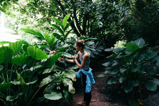 National Tropical Botanical Garden, Kaua'i, Hawai'i