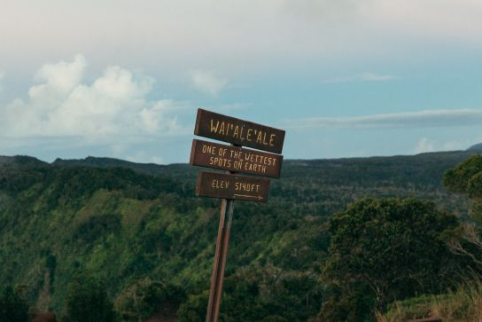 Panneau Wai'Ale'Ale, One of the wettest points on Earth, Koke'e State Park, Kaua'i, Hawaii