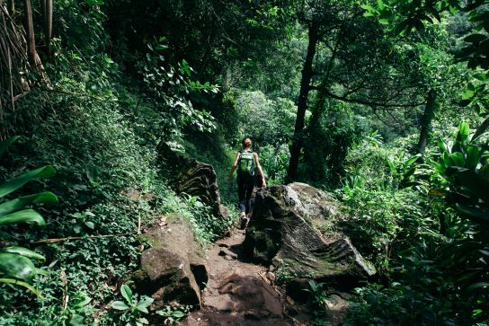 Woman hiking on Kalalau Trail, green, Kaua'i, Hawaii