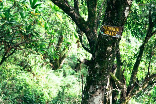 Hanakoa Valley sign, Kalalau Trail, Kaua'i, Hawaii