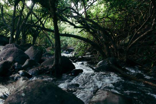 Kalalau Stream, Pools, Kalalau Trail, Kaua'i, Hawaii