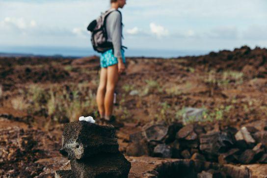 Trail, Ocean View, Big Island, Hawaii