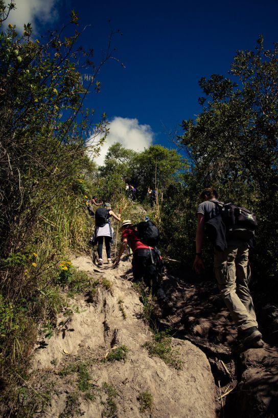Salkantay Trek, Pérou