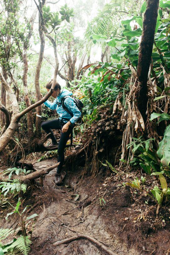 Hiking woman, Kalalau Valley, Koke'e State Park, Kaua'i, Hawaii