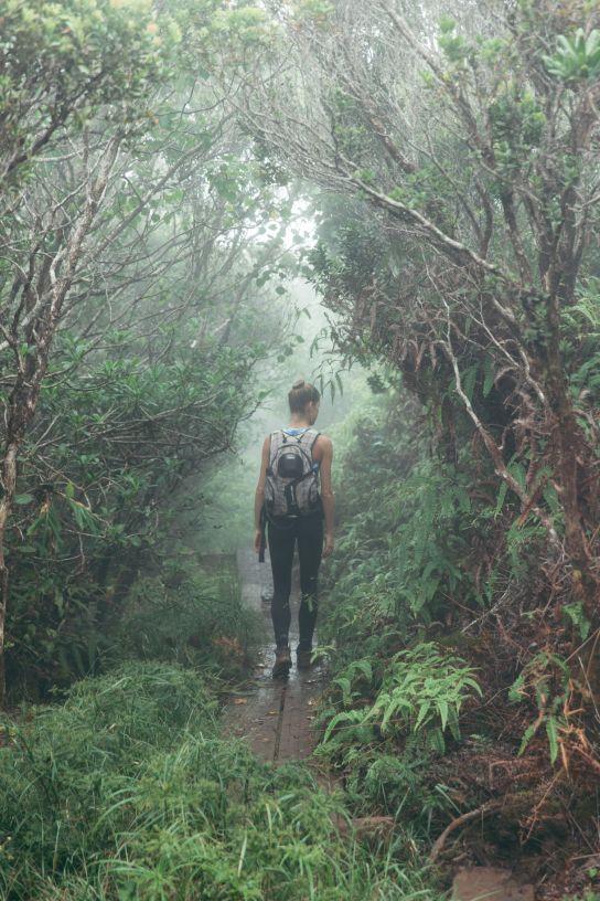Woman hiking in the mist, Koke'e State Park, Kaua'i, Hawaii