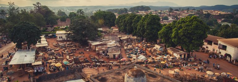 37 days in Cameroon