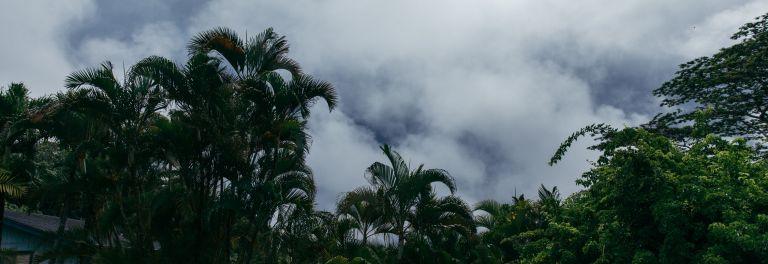Épisode 1: Kaua'i — Un ouragan approche.